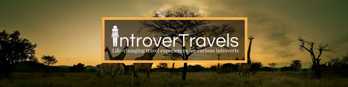 Incredible Design Ideas For Self Confessed Introverts: Turning The Digital Nomad Lifestyle Into A Business